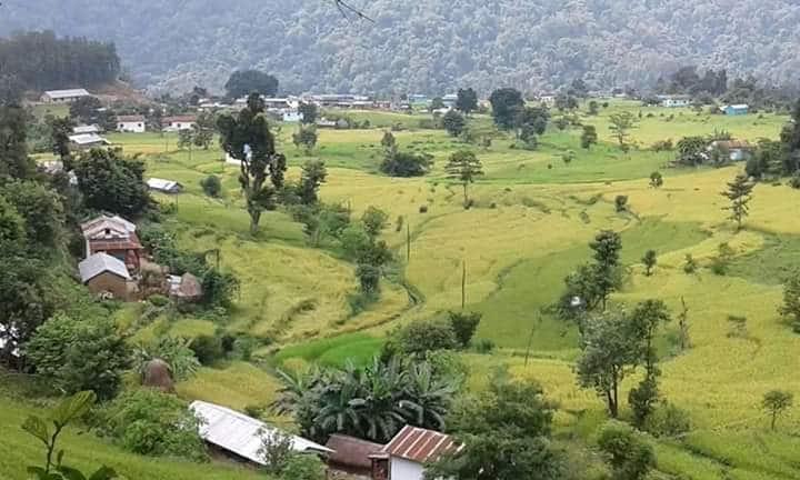 तिनाउ गाउँपालिकाको खेतीयोग्य जमिनमा सिचाईको पहुँच विस्तारमा