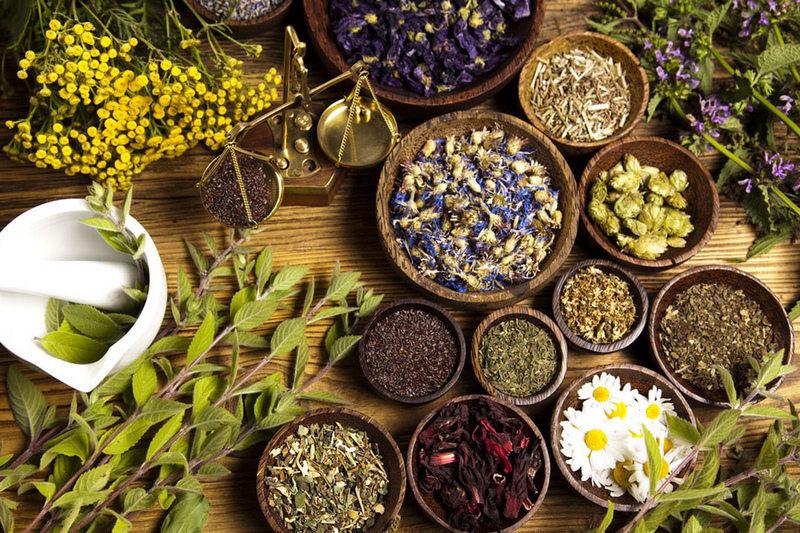 जानी राखौं आपतकालिन उपचारमा प्रयोग हुने ११ जडिबुटी
