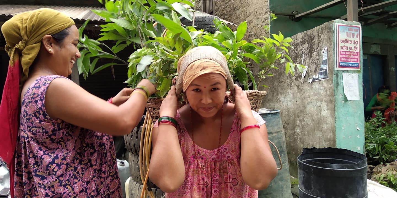 महिलाहरु ब्यावसायिक तरकारी खेतिबाट मनग्य आम्दानी